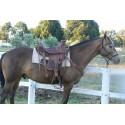 Wade Western Saddle model 1 TROPHY  - Western Saddles